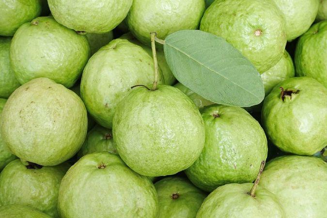 فوائد الجوافة للأطفال