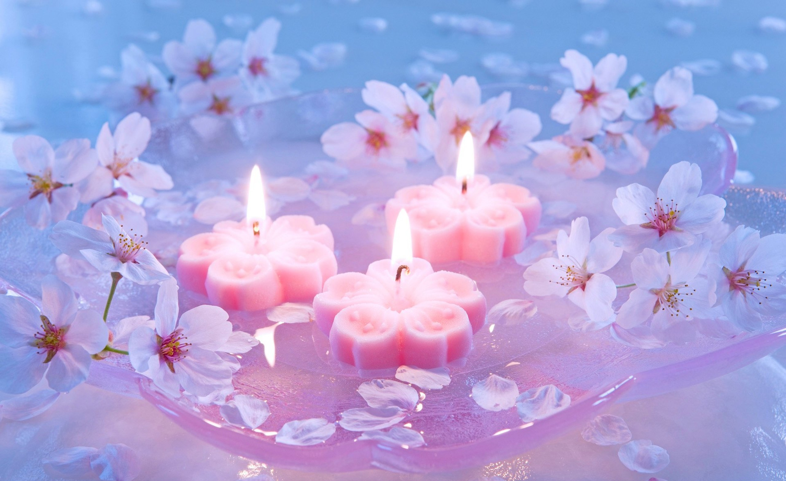 candles_and_cherry_flowers