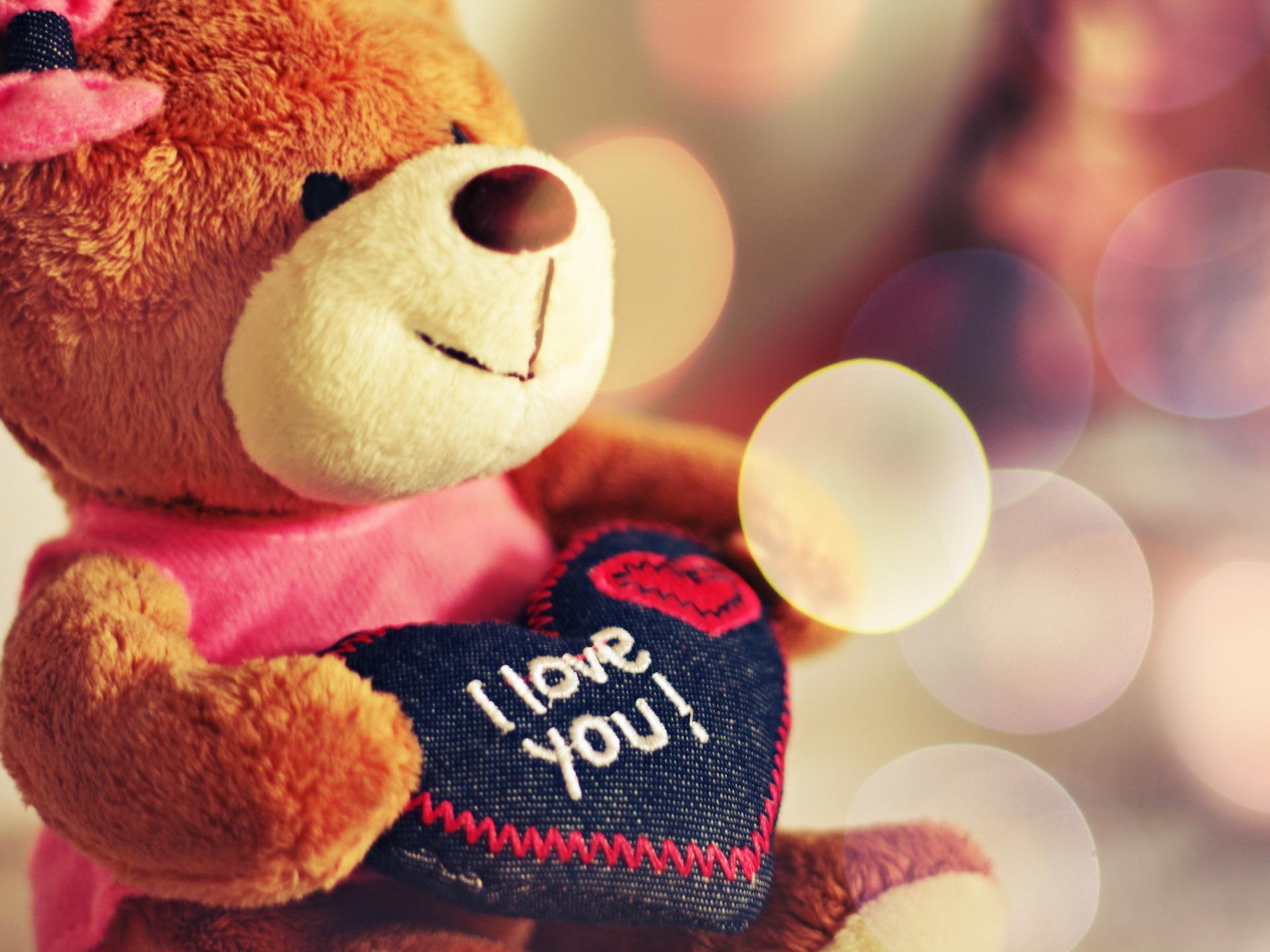 teddy-bear-love-1920-1440-7510